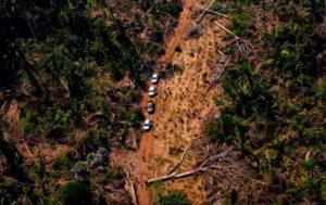 Desmatamento floresta amazônica fiscalização
