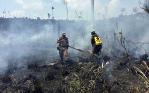 Exército queimadas Amazônia