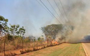 Reserva do Jaburu fogo no Cerrado Misto Brasília