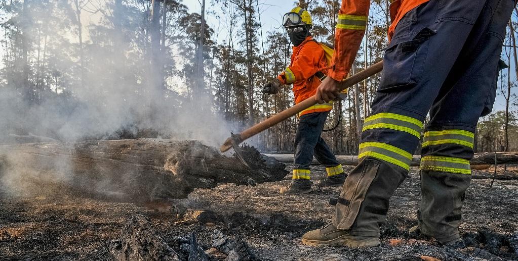 Incêndio florestal Cerrado bombeiros DF