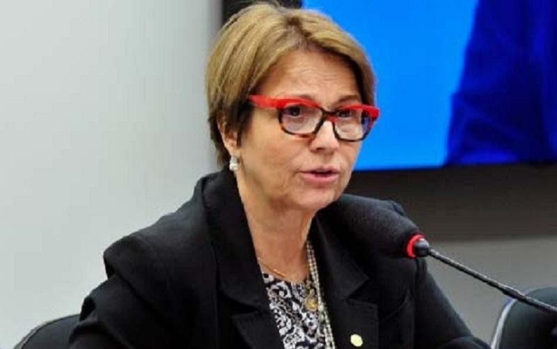 Ministra Teresa Cristina Agricultura